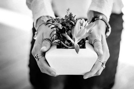 Evde Bitki Yetiştirmenin 5 Faydası